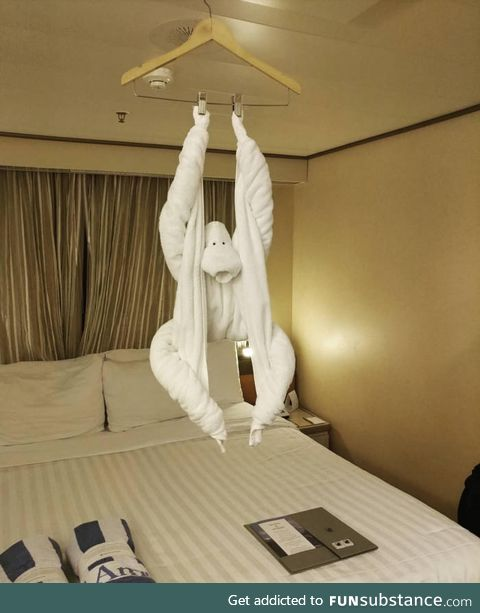 This towel monkey in a cruise ship