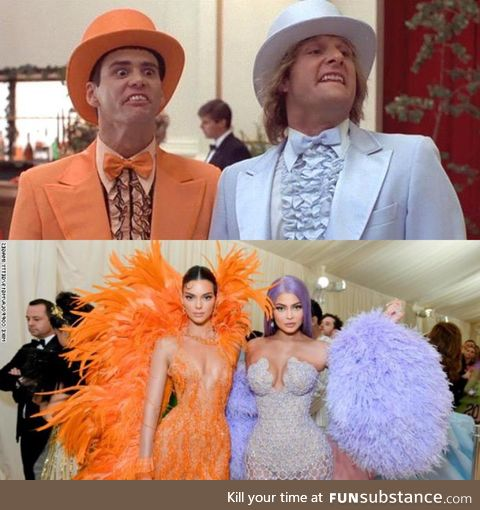 Nailed it! 2019 Dumb and Dumber