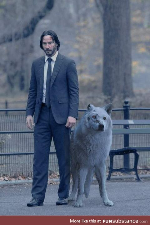 John Wick is coming for John Snow. Do not abandon your dog