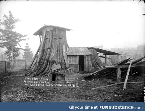 Three bedroom tree stump house in Vancouver, ~1900,