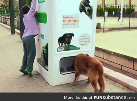 This vending machine dispenses food for homeless dogs when people recycle bottles