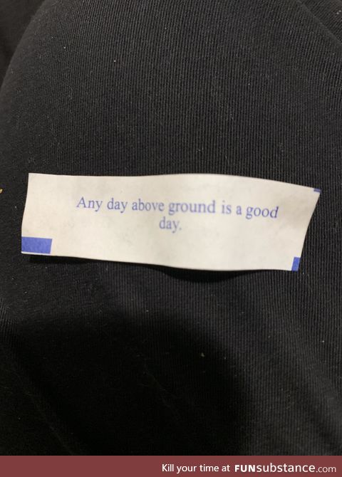 This was my fortune