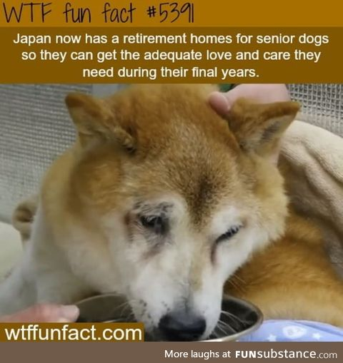 If this is true, then much love for Japan!