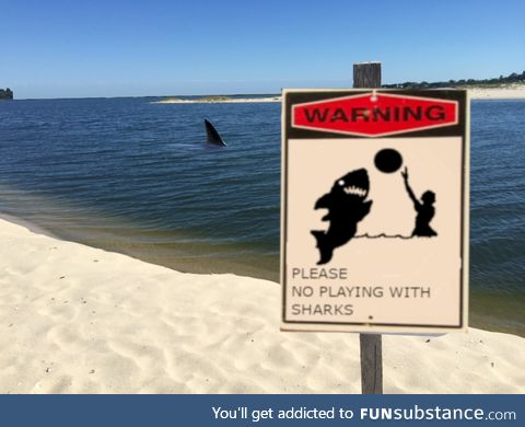 Leave the shark alone
