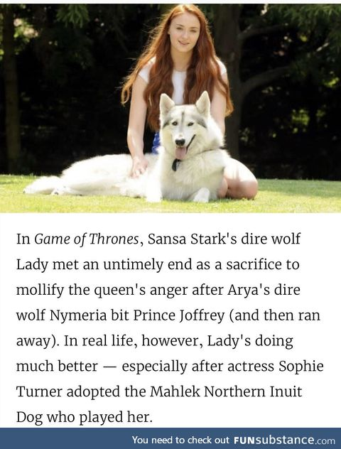 The Queen from the north and her adopted Dire wolf