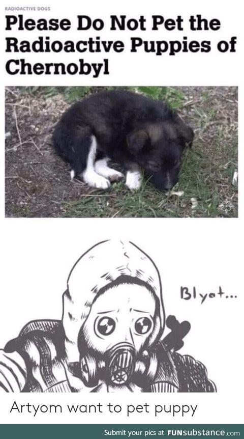 Chernobyl irradiated wolf dog hybrids for adoption. Not kidding
