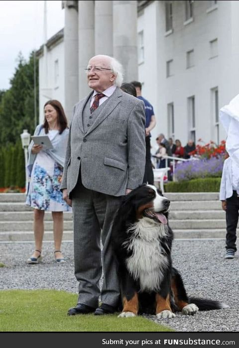 The President of Ireland and the First Pupper make an appearance
