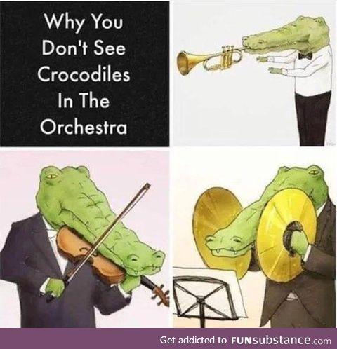 Crocodiles struggle in band class