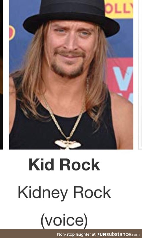 """Remember the time Kid Rock played """"kidney rock"""" in Osmosis Jones?"""
