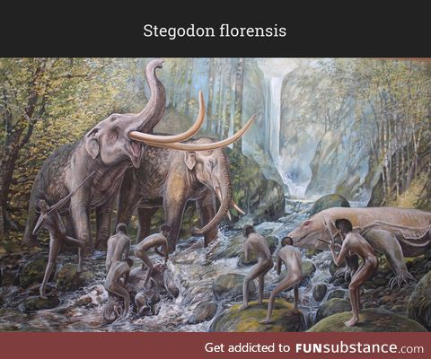 Daily Dose of Prehistory: Back From Extinction 118