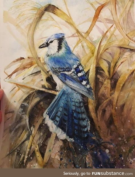 A blue jay in watercolor. Really happy how this turned out