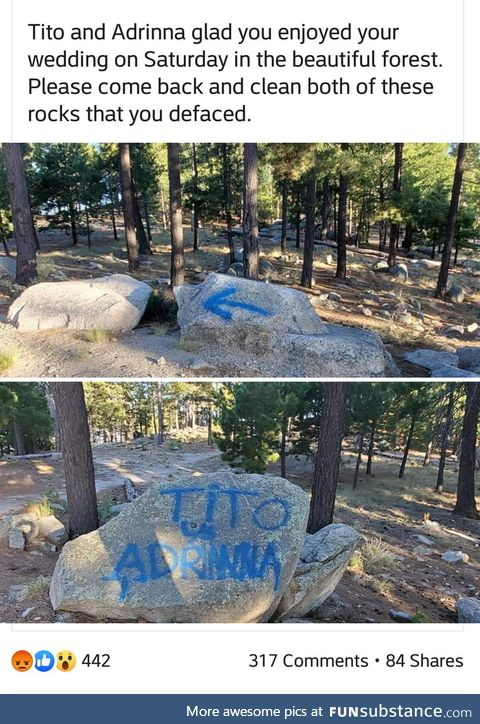 Imagine having your wedding in a national forest, then vandalizing said forest