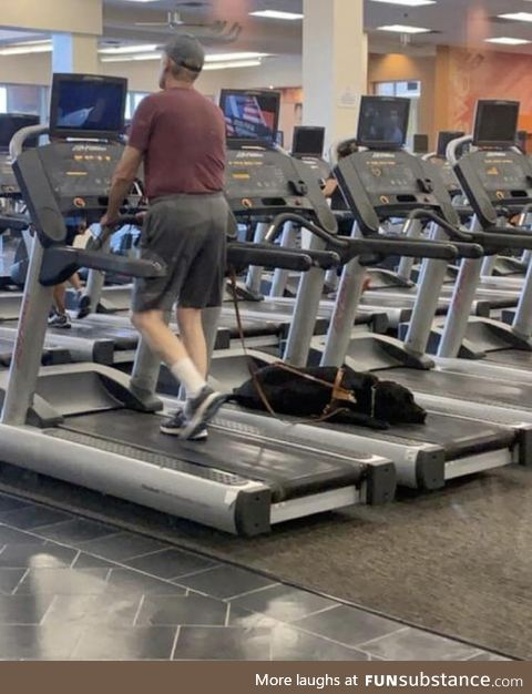 Blind man working out. If he wanted to change machines, his dog would go get staffs