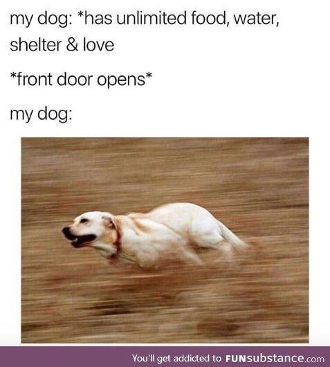 Gotta get away!!