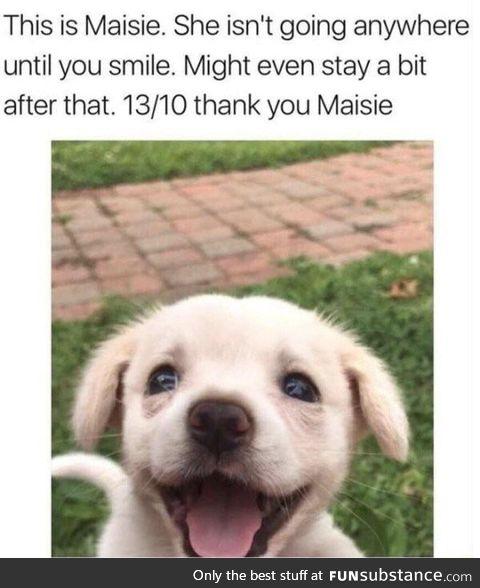 Found this cute meme online