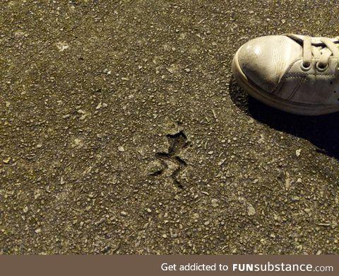 Rip in peace mr. Frogger