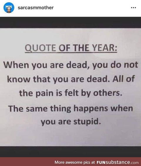 Dead and stupid can be pretty similar
