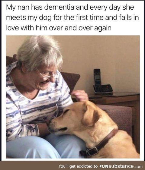 A human to greet a dog the way a dog greets a human