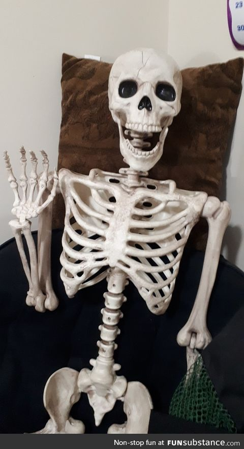 Here is my pet Skeleton, Eddy