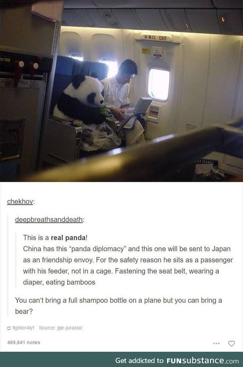 Brb, ordering a panda