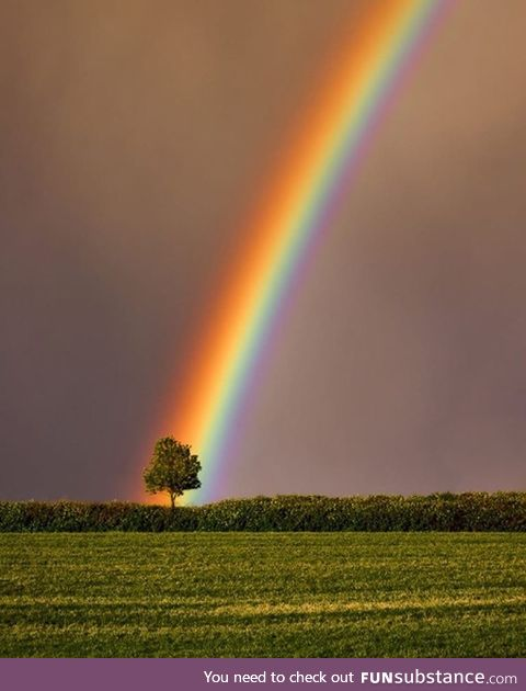 Found the Pot of Gold !