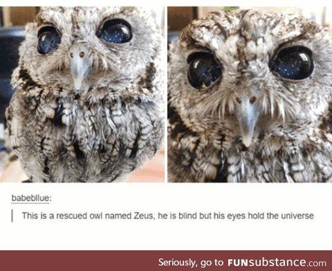 Zeus, Guardian of Galaxies