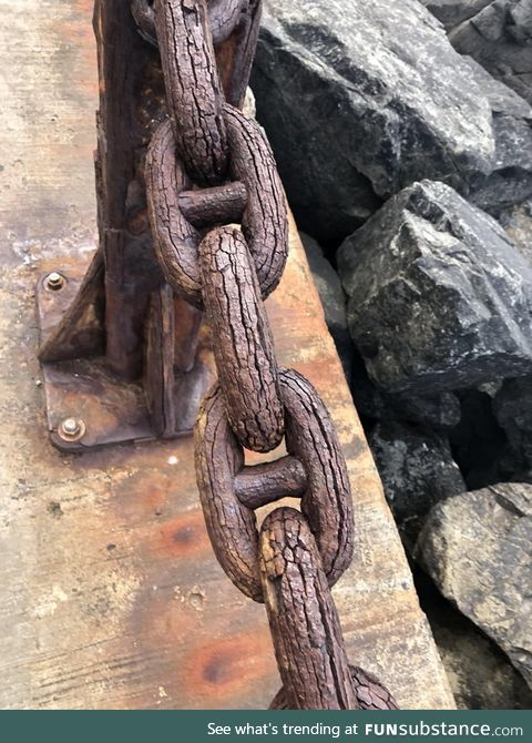 This chain is so old and rusted it looks like wood