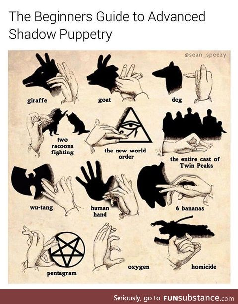 You've probably never heard of shadow puppetry