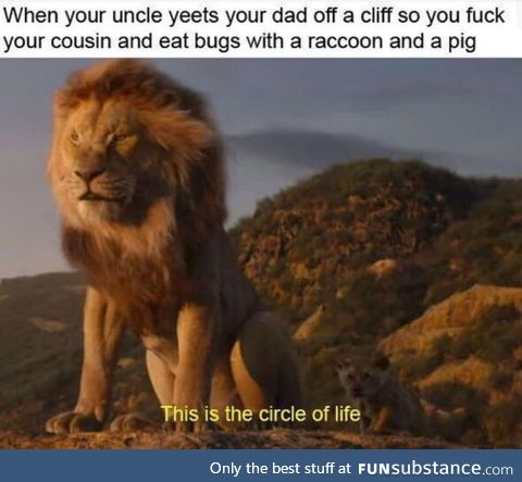 The lion king summerized