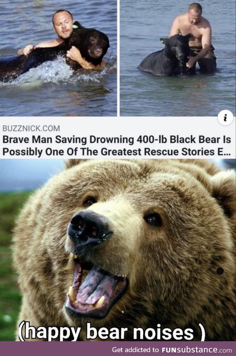 Bears are great