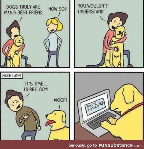 This hurts as a dog person. But it's funny
