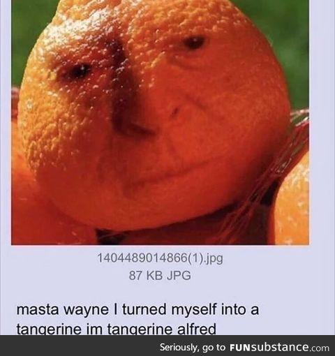 Tangerine Alfred