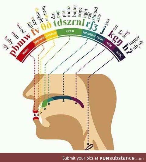 Where certain sounds are produced in your mouth. (Read the words from start to finish)