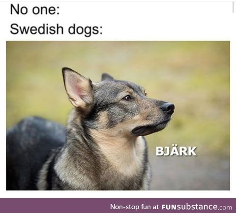 ( In a swedish accent ) Sven is that you ?