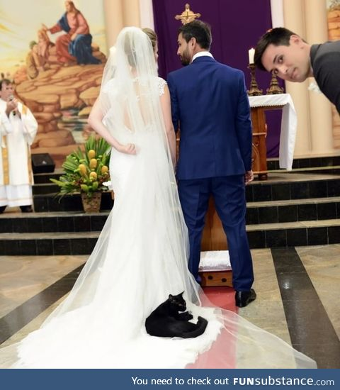 Black kitty wedding crasher, who's known to wander around the church, decides to lay