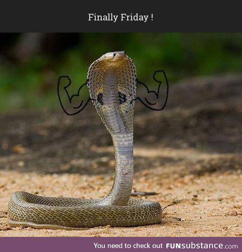 Snake Doodle #14