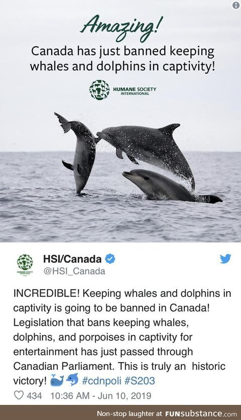 """Canada just passed the """"Free Willy"""" bill, making it illegal to keep dolphins"""