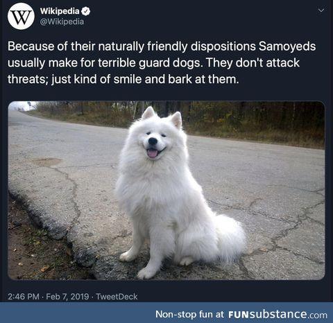 Guards evil out