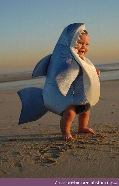 Baby shark, doo doo doo doo doo