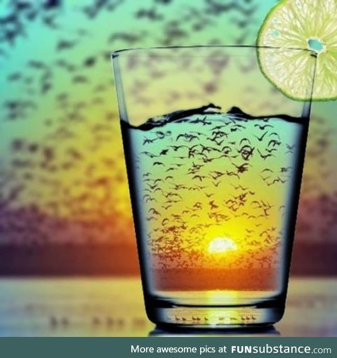 This glass with birds