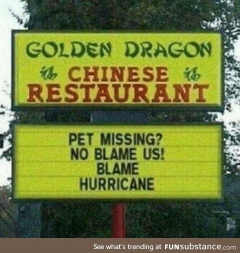 No blame us!