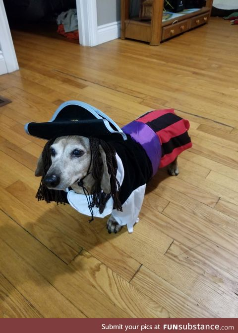 Captain Gus Sparrow