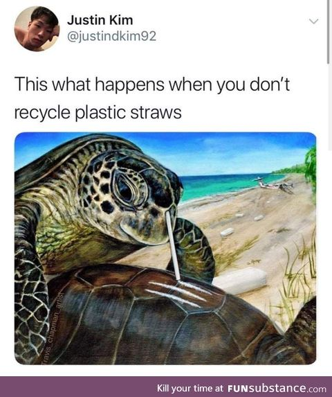 Please, won't anyone think of the turtles?