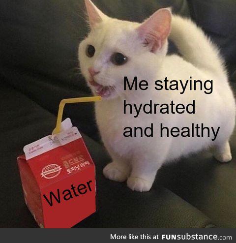 Always drink enough frens