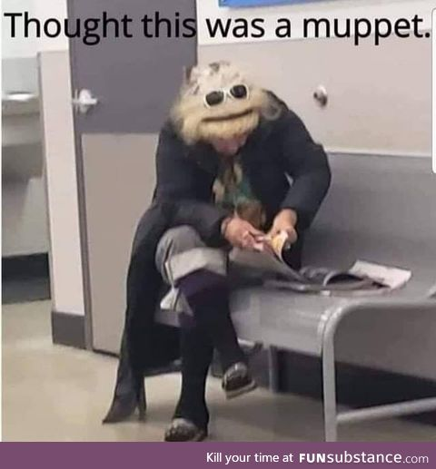 Name the Muppet