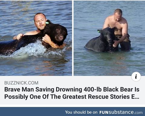 Amazing man saves bear from drowning
