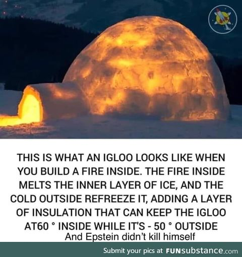 This profile is dedicated to such Igloo related facts