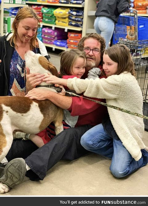 A family finds their missing dog while going to adopt a cat