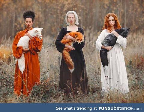 Three Shades of Foxes by Anastasiya Dobrovolskaya