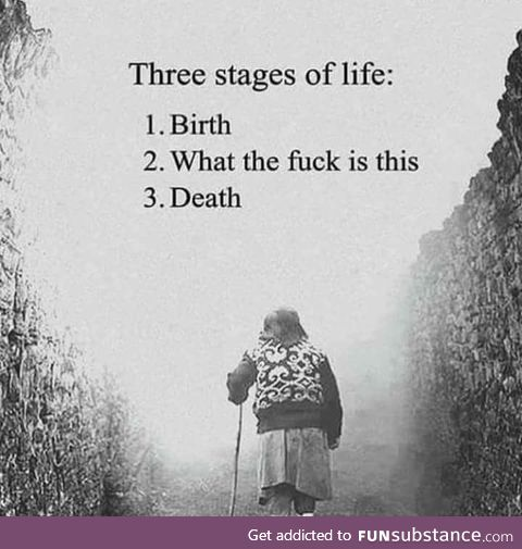 The 3 stages